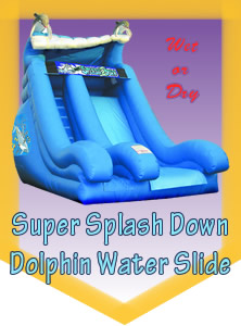 Dolphin Water Slide